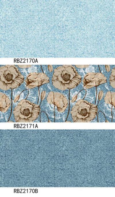 RBZ2171a