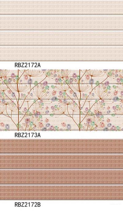 RBZ2173a