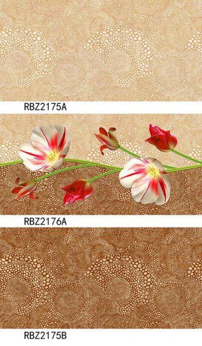 RBZ2176a